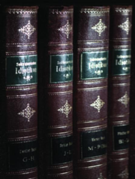 Schweizerdeutsches Wörterbuch (Fasc.)